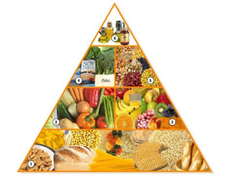 Dieta Ovolactovegetariana Pdf